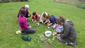 animation Le botaniste en herbe enfants au Jardin pour la Terre, Arlanc, Puy de dôme